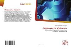 Couverture de Malacosoma alpicolum