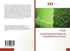 Couverture de Etude biogéochimique de la production du cuivre