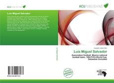 Bookcover of Luis Miguel Salvador
