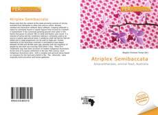 Portada del libro de Atriplex Semibaccata