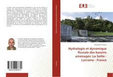 Обложка Hydrologie et dynamique fluviale des bassins aménagés: La Seille - Lorraine - France