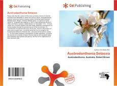 Copertina di Austrodanthonia Setacea
