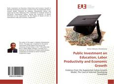 Bookcover of Public Investment on Education, Labor Productivity and Economic Growth