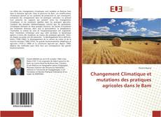 Changement Climatique et mutations des pratiques agricoles dans le Bam kitap kapağı