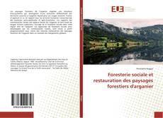 Bookcover of Foresterie sociale et restauration des paysages forestiers d'arganier
