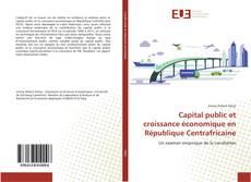 Bookcover of Capital public et croissance économique en République Centrafricaine