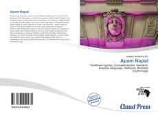 Capa do livro de Apam Napat