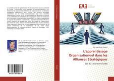 Обложка L'apprentissage Organisationnel dans les Alliances Stratégiques