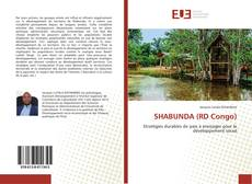 Bookcover of SHABUNDA (RD Congo)