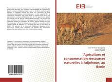 Couverture de Agriculture et consommation ressources naturelles à Adjohoun, au Benin