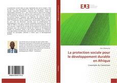 Copertina di La protection sociale pour le développement durable en Afrique