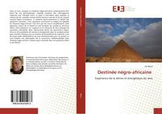 Borítókép a  Destinée négro-africaine - hoz