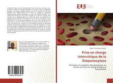 Bookcover of Prise en charge intercritique de la Drépanocytose