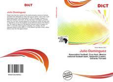 Portada del libro de Julio Domínguez