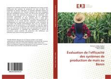 Bookcover of Évaluation de l'efficacité des systèmes de production de maïs au Bénin