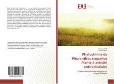 Phytochimie de Pituranthos scoparius Plante à activité antiradicalaire kitap kapağı