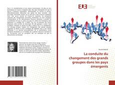 Capa do livro de La conduite du changement des grands groupes dans les pays émergents