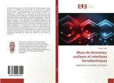 Capa do livro de Murs de domaines, surfaces et interfaces ferroélectriques