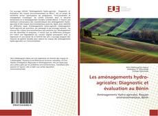 Couverture de Les aménagements hydro-agricoles: Diagnostic et évaluation au Bénin
