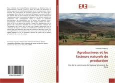 Capa do livro de Agrobusiness et les facteurs naturels de production