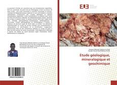 Обложка Etude géologique, mineralogique et geochimique