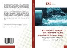 Bookcover of Synthèse d'un nouveau bio-adsorbant pour la dépollution des eaux usées