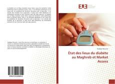 Copertina di État des lieux du diabète au Maghreb et Market Access