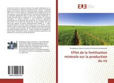 Buchcover von Effet de la fertilisation minérale sur la production du riz