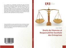 Bookcover of Droits de l'Homme et Responsabilité Sociétale des Entreprises