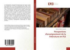 Perspectives d'enseignement de la littérature en FLE的封面