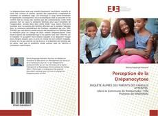 Perception de la Drépanocytose kitap kapağı