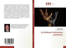 Le lambeau interosseux postérieur的封面