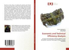 Bookcover of Economic and Technical Efficiency Analysis