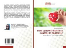 Bookcover of Profil Epidemio-clinique de l'ANEMIE ET GROSSESSE
