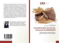 Caractérisation du blé dur fermenté El HAMMOUM kitap kapağı