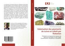 Bookcover of Valorisation des gisements de cuivre et cobalt par flottation