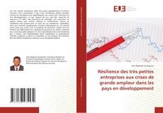 Couverture de Résilience des très petites entreprises aux crises de grande ampleur dans les pays en développement