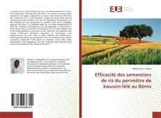 Bookcover of Efficacité des semenciers de riz du périmètre de koussin-lélé au Bénin