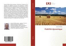 Bookcover of Fiabilité dynamique