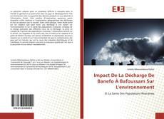 Bookcover of Impact De La Décharge De Banefo À Bafoussam Sur L'environnement