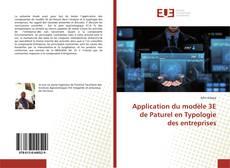 Bookcover of Application du modèle 3E de Paturel en Typologie des entreprises