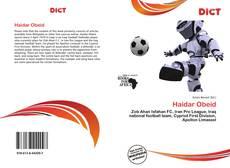 Bookcover of Haidar Obeid