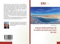 Borítókép a  Impact d'alimentation de la saline de Zarzis par l'eau de mer - hoz