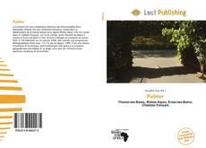 Bookcover of Publier