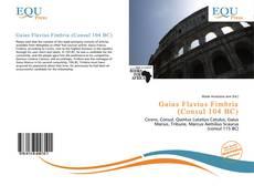 Buchcover von Gaius Flavius Fimbria (Consul 104 BC)