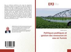 Politiques publiques et gestion des ressources en eau en Tunisie的封面