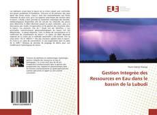 Bookcover of Gestion Integrée des Ressources en Eau dans le bassin de la Lubudi