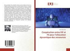 Bookcover of Coopération entre FIP et FS pour l'allocation dynamique des ressources