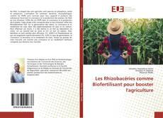 Capa do livro de Les Rhizobacéries comme Biofertilisant pour booster l'agriculture