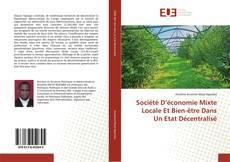 Copertina di Société D'économie Mixte Locale Et Bien-être Dans Un Etat Décentralisé